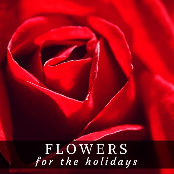 Flowers_for_the_Holidays